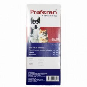 https://www.petsshoptoys.com/452-thickbox_default/praferan-dewormer-for-hunder-og-katter-noen-vekt.jpg
