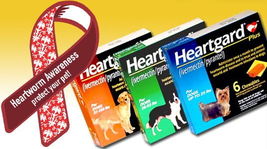 HEARTGARD® Plus